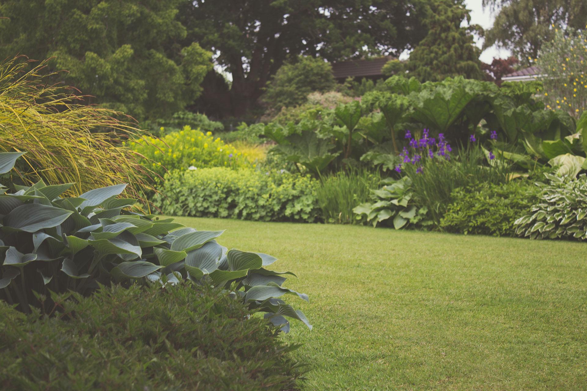 Onderhoud aan tuin door Hans Verstraaten Hoveniers